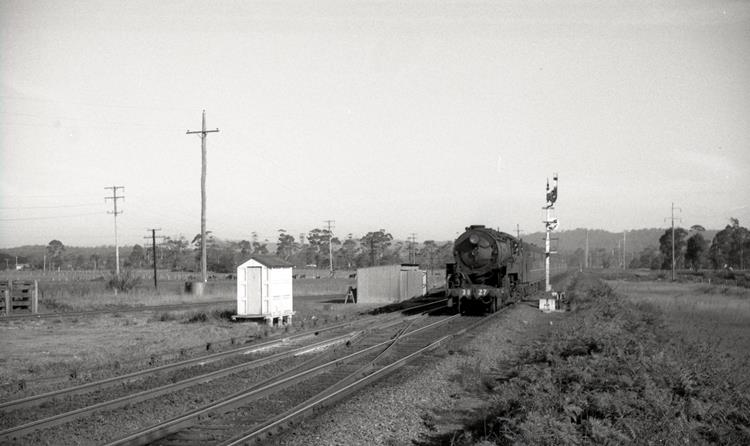 3827 newcastle flyer tuggerah 1968 nsw steam train stories