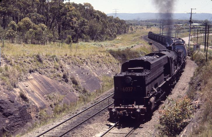 6037 dora creek coal train newcastle nsw steam train