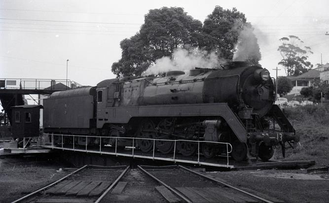 3813 steam locomotive gosford loco nsw steam train