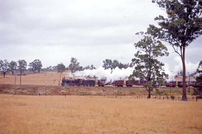3246 nsw steam engine belford near singleton 1971