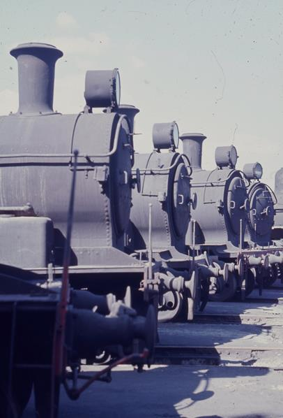 Port Waratah Loco Depot D50, D53 class nsw steam engine