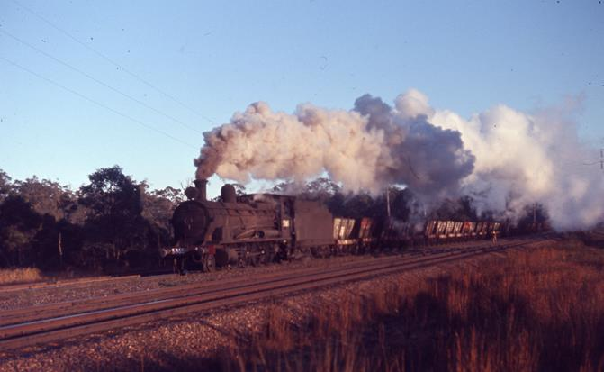 5365 NSW steam engine Taro 1971