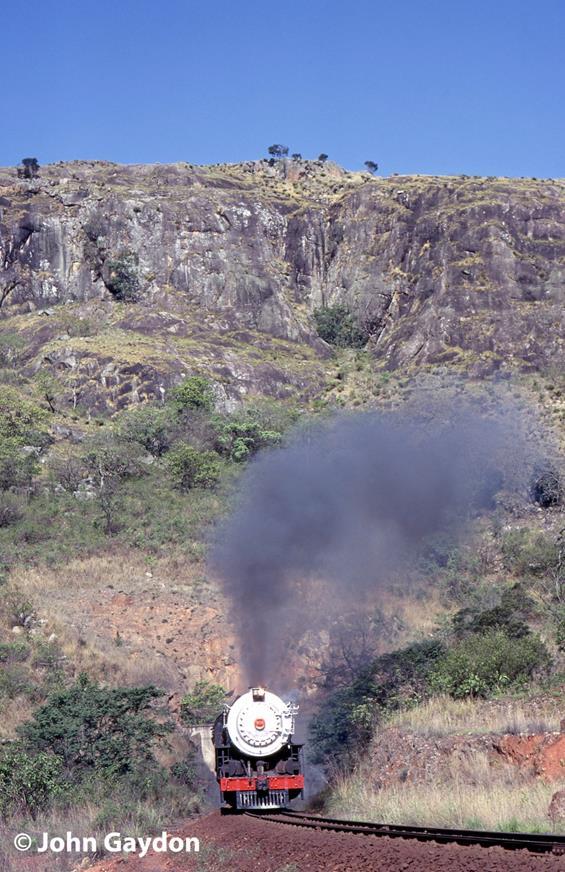 swaziland white rhino steam train 700 class