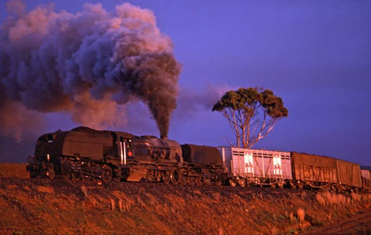 GEA steam train western cape caledon freight garratt