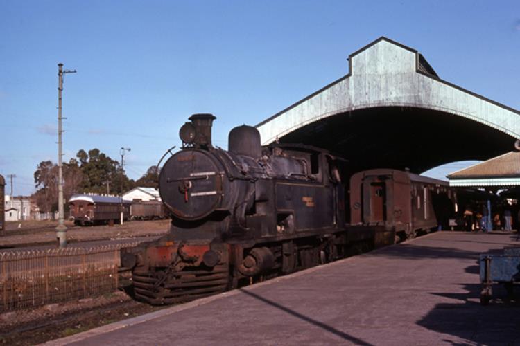 Ferrocarril Roca argentina railway steam train