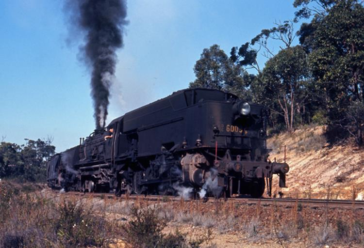 6009 AD60 wangi wangi steam train