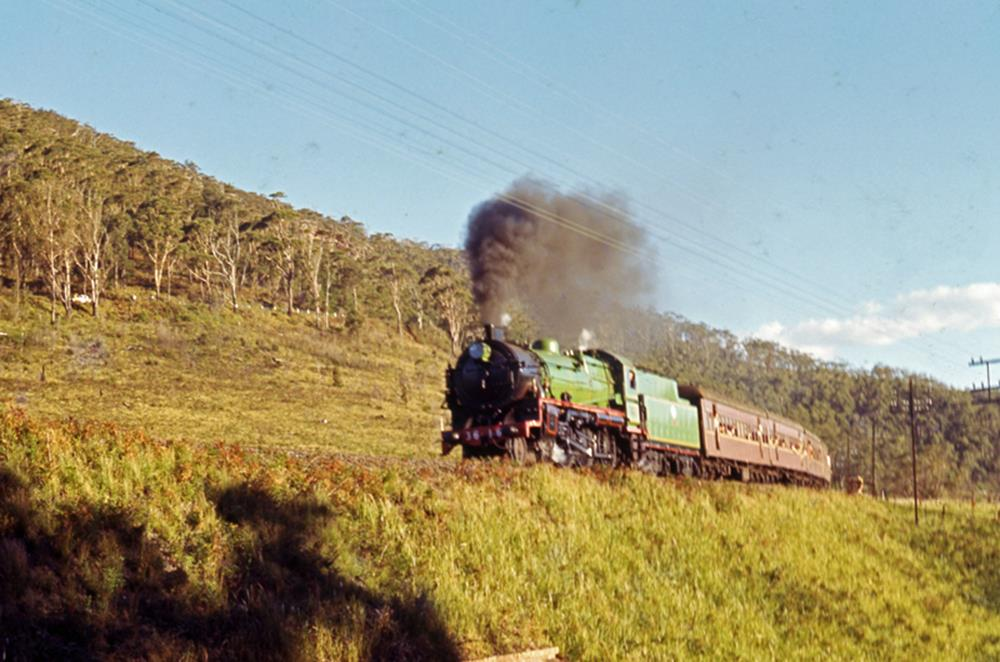 3616 nsw steam engine