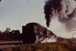 steam train 60 class garrat