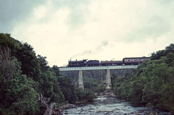5261 dorrigo nsw steam trains