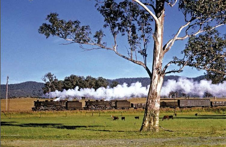 northern exposures. double 59 class steam engines north coast nsw gerg triplett