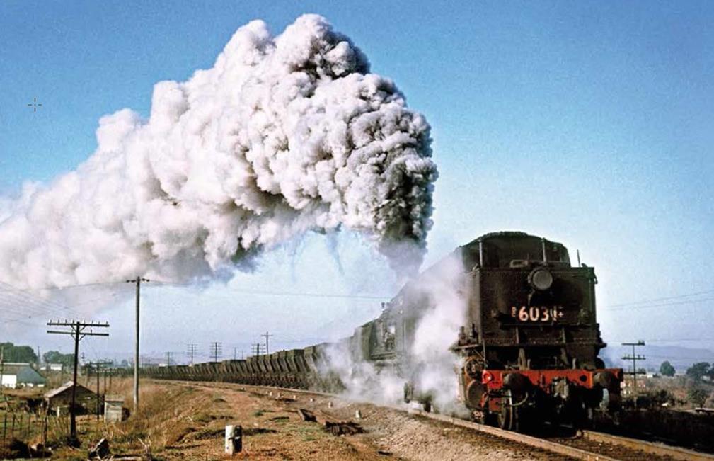 Singelton Heights steam train