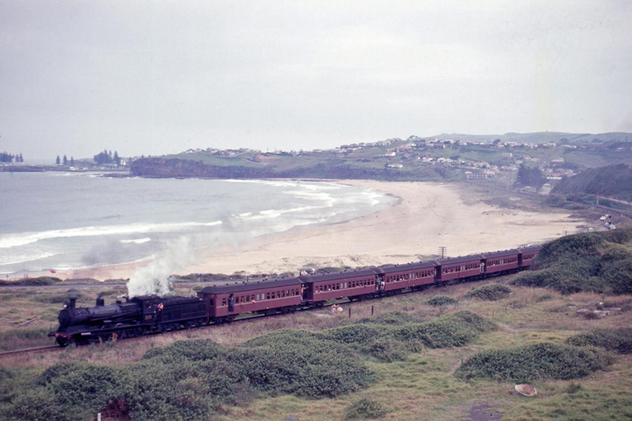 3229 steam loco kiama bombo